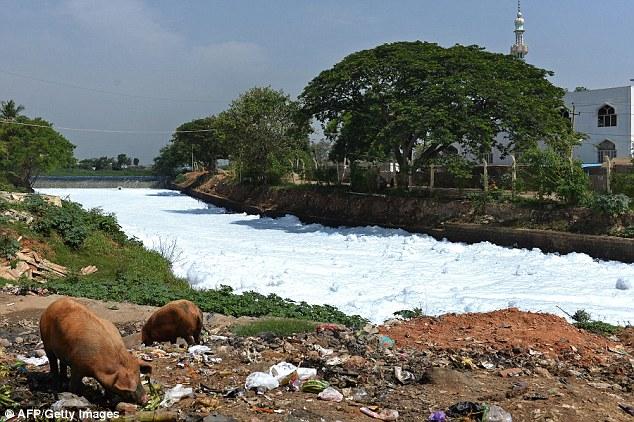 Ấn Độ: Bọt từ sông bị ô nhiễm tràn ra đường - Ảnh 3.