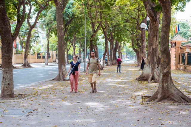 Con đường lãng mạn nhất Hà Nội đẹp ngỡ ngàng mùa cây thay lá - ảnh 8