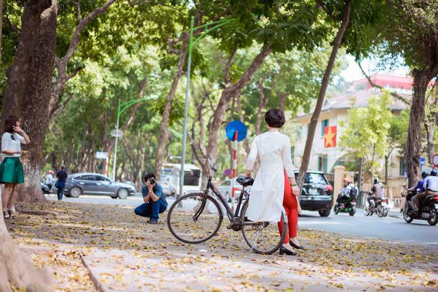 Con đường lãng mạn nhất Hà Nội đẹp ngỡ ngàng mùa cây thay lá - ảnh 6