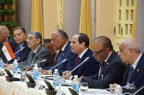 Chủ tịch nước Trần Đại Quang hội đàm với Tổng thống Ai Cập Abdel Fattah Al Sisi - Ảnh 3.