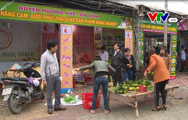 Họp báo Lễ hội Cam và các sản phẩm nông nghiệp Hà Tĩnh - Ảnh 1.