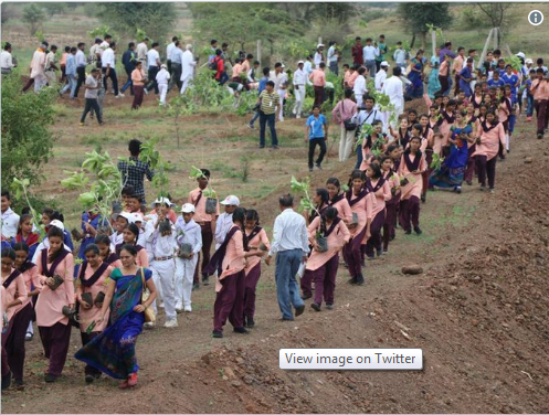 Choáng với màn trồng 66 triệu cây xanh trong nửa ngày ở Ấn Độ - Ảnh 5.