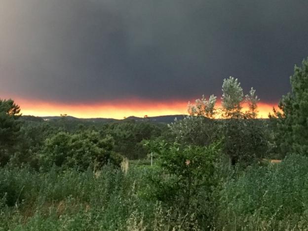 Cháy rừng ở Bồ Đào Nha: Số người thương vong đã lên tới hơn 100 - Ảnh 10.