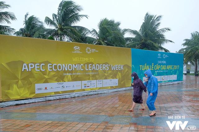 Đà Nẵng chỉnh trang đường phố chào đón APEC 2017 sau bão số 12 - Ảnh 7.