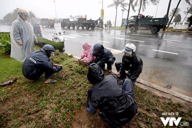 Đà Nẵng chỉnh trang đường phố chào đón APEC 2017 sau bão số 12 - Ảnh 1.