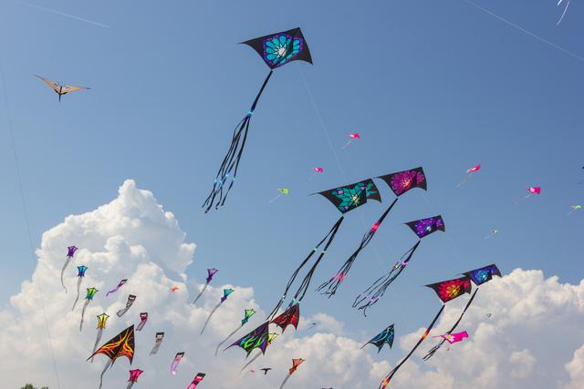 """Ngày 25/6, khai mạc lễ hội Diều """"Bay cao những ước mơ"""" tại TP.HCM - Ảnh 1."""
