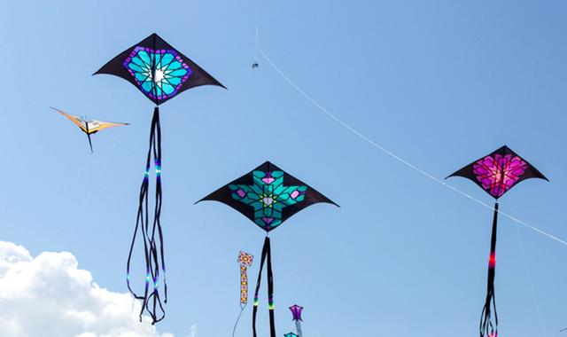 """Ngày 25/6, khai mạc lễ hội Diều """"Bay cao những ước mơ"""" tại TP.HCM - Ảnh 2."""