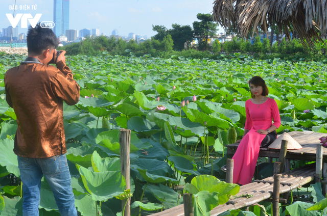Giới trẻ nô nức chụp ảnh, thả dáng bên hồ sen nở rộ - Ảnh 8.
