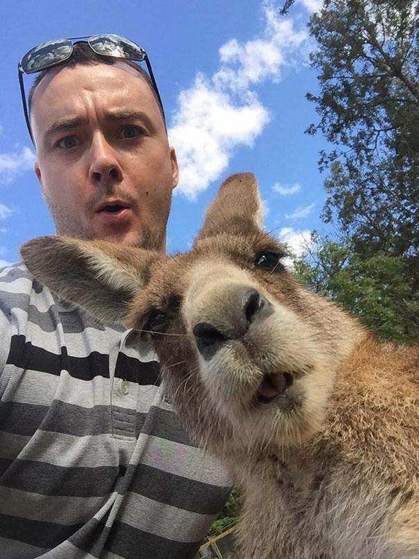 Không chỉ con người, các loài vật cũng có ảnh selfie cực chất - Ảnh 6.