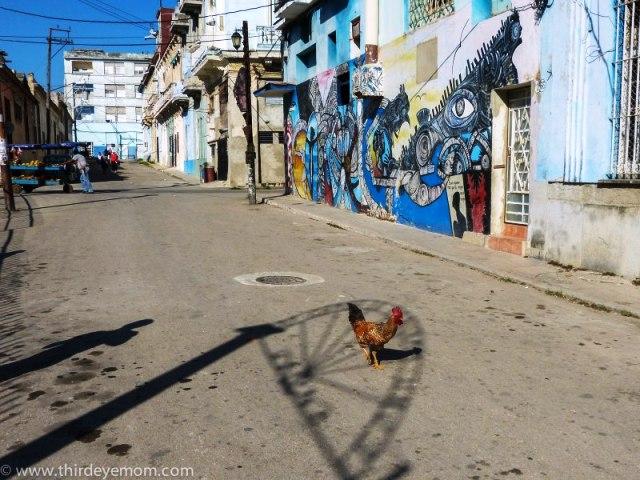 Nghệ thuật đường phố của Cuba - Ảnh 11.