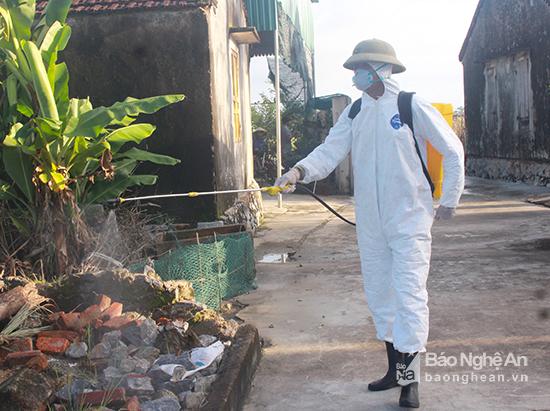 Xuất hiện thêm ổ dịch lở mồm long móng tại Nghệ An - Ảnh 1.