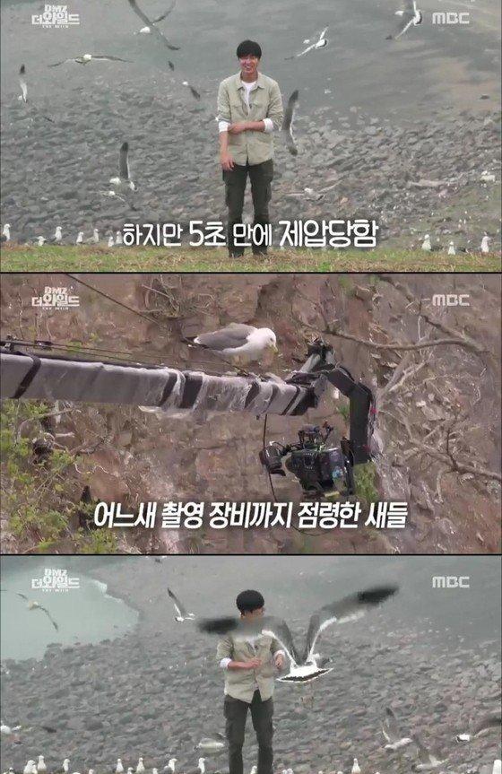Lee Min Ho nhăn mặt khi nhớ lại cảnh bị chim bĩnh lên người - Ảnh 1.