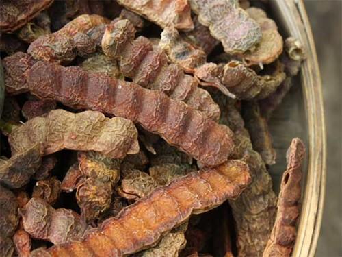 Mẹo giúp da đầu hết khô và nhiều gàu trong mùa đông lạnh - Ảnh 5.