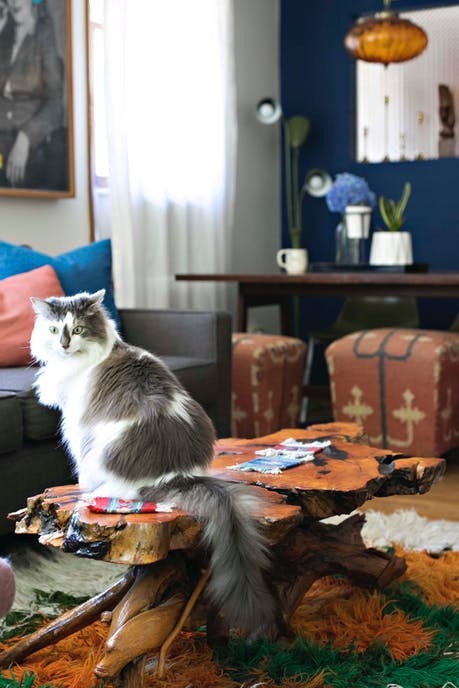 Cặp đôi nghiện mèo biến ngôi nhà hơn 58 m2 thành nơi ở lý tưởng - Ảnh 2.