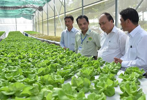 Thủ tướng: Bình Phước phải là thủ phủ của nông nghiệp công nghệ cao - Ảnh 1.