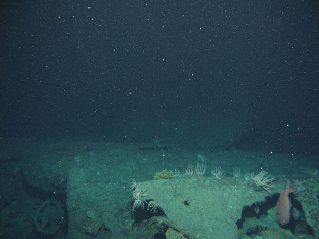 Tìm thấy con tàu 800 tấn mất tích bí ẩn dưới đáy đại dương hơn 1 thế kỷ - ảnh 1