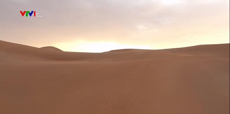 Dấu tích nguồn cội con người trên sa mạc