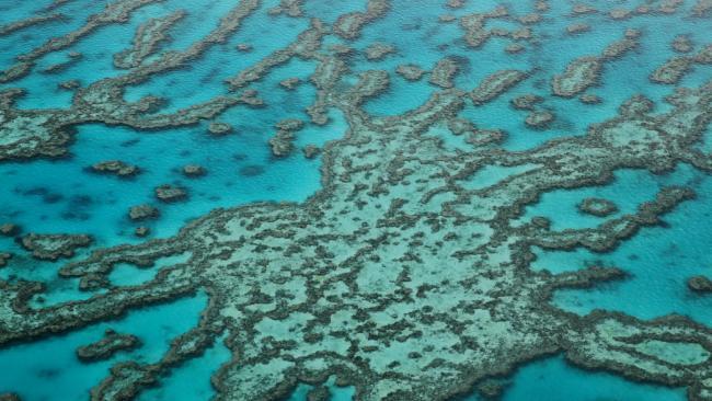 Rạn san hô Great Barrier Reef được định giá 56 tỷ USD