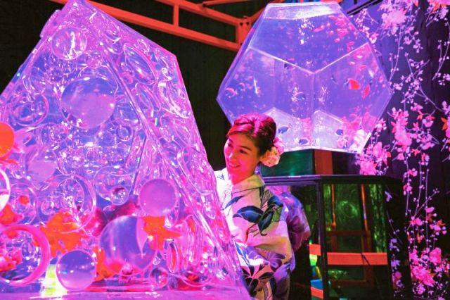 Triển lãm thủy cung nghệ thuật độc đáo ở Tokyo, Nhật Bản - ảnh 9