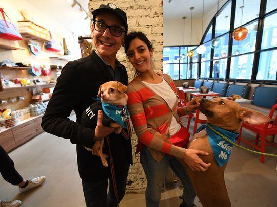 Quán cà phê dành cho cún cưng đầu tiên tại New York - Ảnh 4.