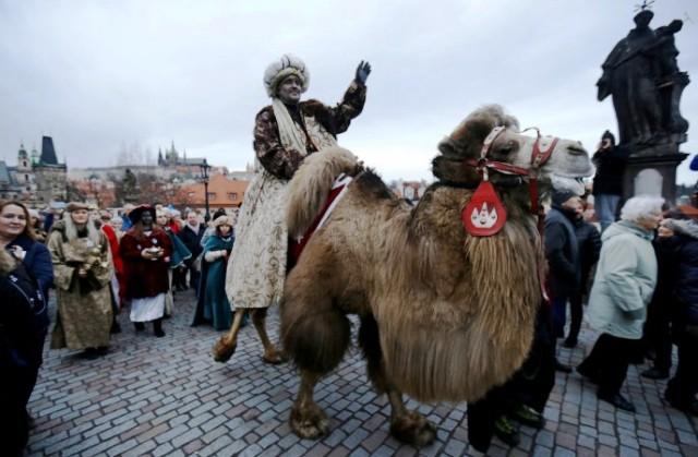 Cuộc thi lạc đà đẹp nhất tại Saudi Arabia - Ảnh 6.