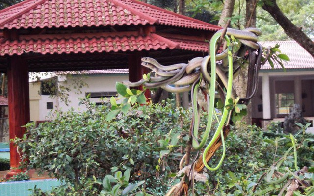 4 điểm du lịch ở Việt Nam khiến khách vừa đi vừa rùng mình sợ hãi - Ảnh 1.