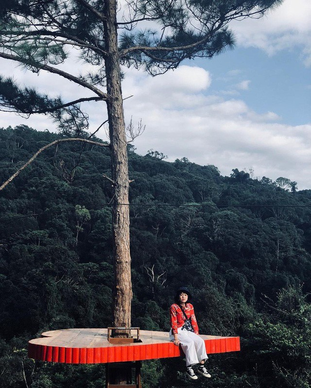 """Dân du lịch háo hức """"check-in"""" cây thông sống ảo độc nhất vô nhị ở Đà Lạt - Ảnh 1."""
