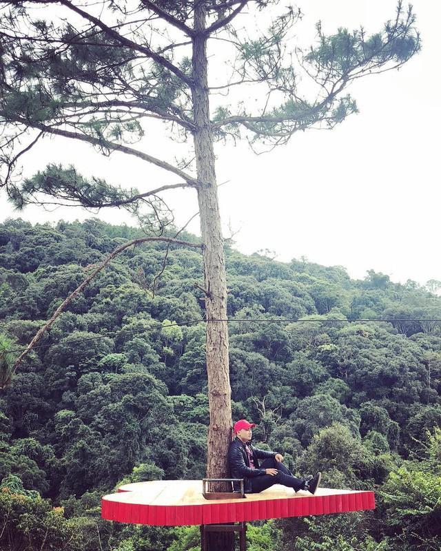"""Dân du lịch háo hức """"check-in"""" cây thông sống ảo độc nhất vô nhị ở Đà Lạt - Ảnh 7."""
