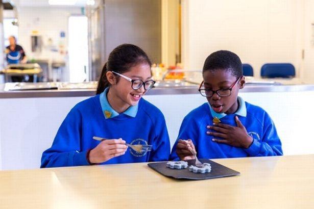 Các nhà khoa học đã tạo ra các bữa ăn trường học in 3D - Ảnh 2.