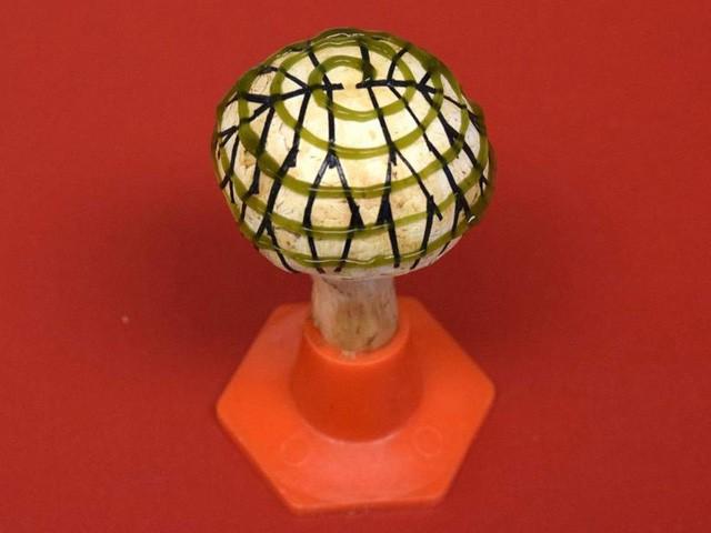 """Nấm có thể được sử dụng tạo ra """"điện sinh học"""" trong tương lai - Ảnh 1."""