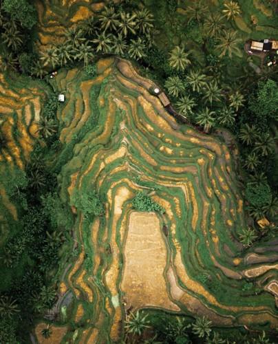 Ngỡ ngàng vẻ hoang sơ, tươi đẹp của các vùng đất châu Á từ trên cao - Ảnh 3.