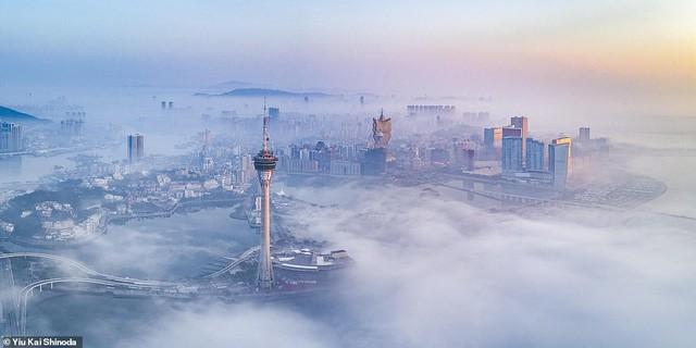 Những bức ảnh đẹp nhất giải thưởng Nhiếp ảnh quốc tế Epson - Ảnh 19.