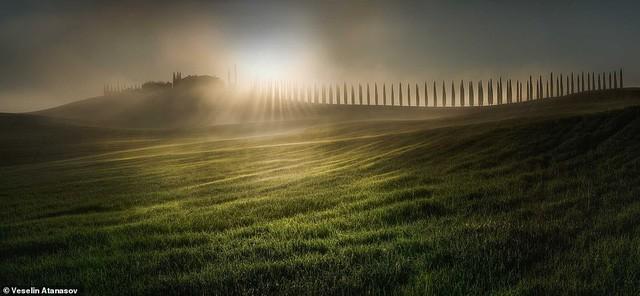 Những bức ảnh đẹp nhất giải thưởng Nhiếp ảnh quốc tế Epson - Ảnh 10.