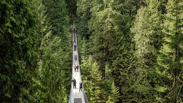 11 cây cầu treo đáng sợ nhất thế giới - Ảnh 3.