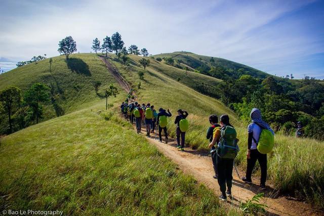 Những đồi cỏ xanh bạt ngàn trên cung đường trekking đẹp nhất Việt Nam - Ảnh 1.