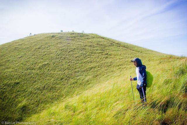 Những đồi cỏ xanh bạt ngàn trên cung đường trekking đẹp nhất Việt Nam - Ảnh 2.