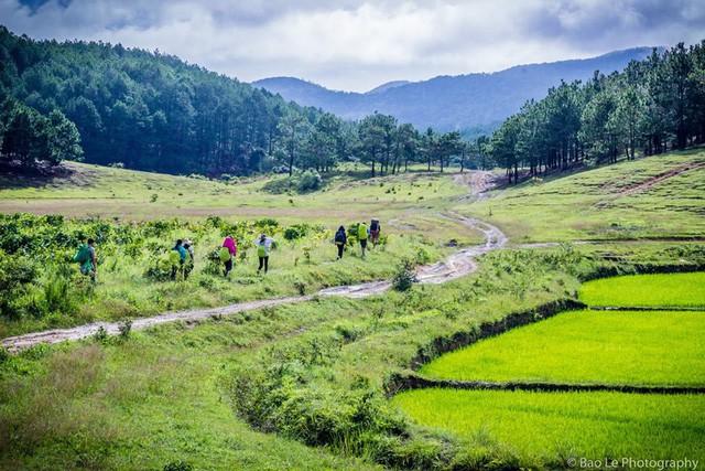 Những đồi cỏ xanh bạt ngàn trên cung đường trekking đẹp nhất Việt Nam - Ảnh 14.