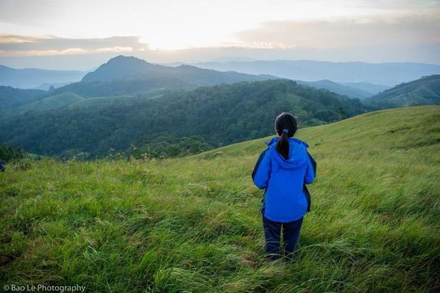 Những đồi cỏ xanh bạt ngàn trên cung đường trekking đẹp nhất Việt Nam - Ảnh 4.
