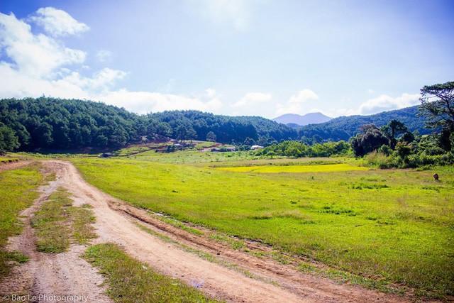 Những đồi cỏ xanh bạt ngàn trên cung đường trekking đẹp nhất Việt Nam - Ảnh 6.
