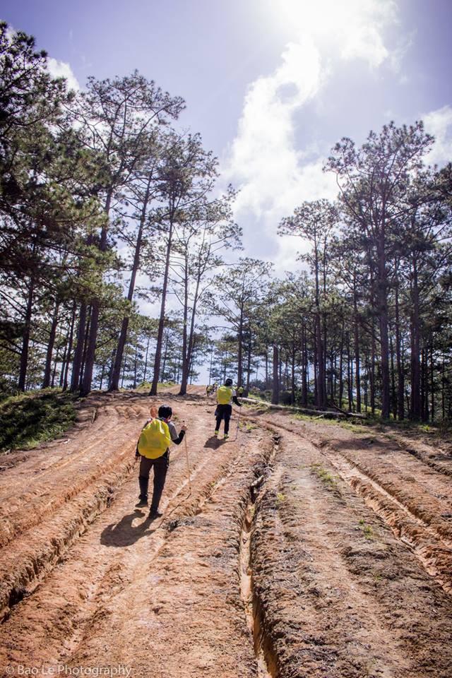 Những đồi cỏ xanh bạt ngàn trên cung đường trekking đẹp nhất Việt Nam - Ảnh 8.