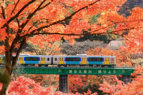 Những địa điểm ngắm lá vàng lá đỏ nổi tiếng nhất nước Nhật - Ảnh 8.