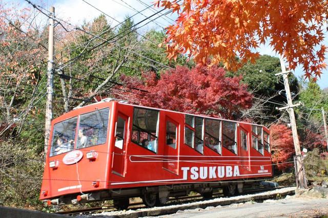 Những địa điểm ngắm lá vàng lá đỏ nổi tiếng nhất nước Nhật - Ảnh 9.