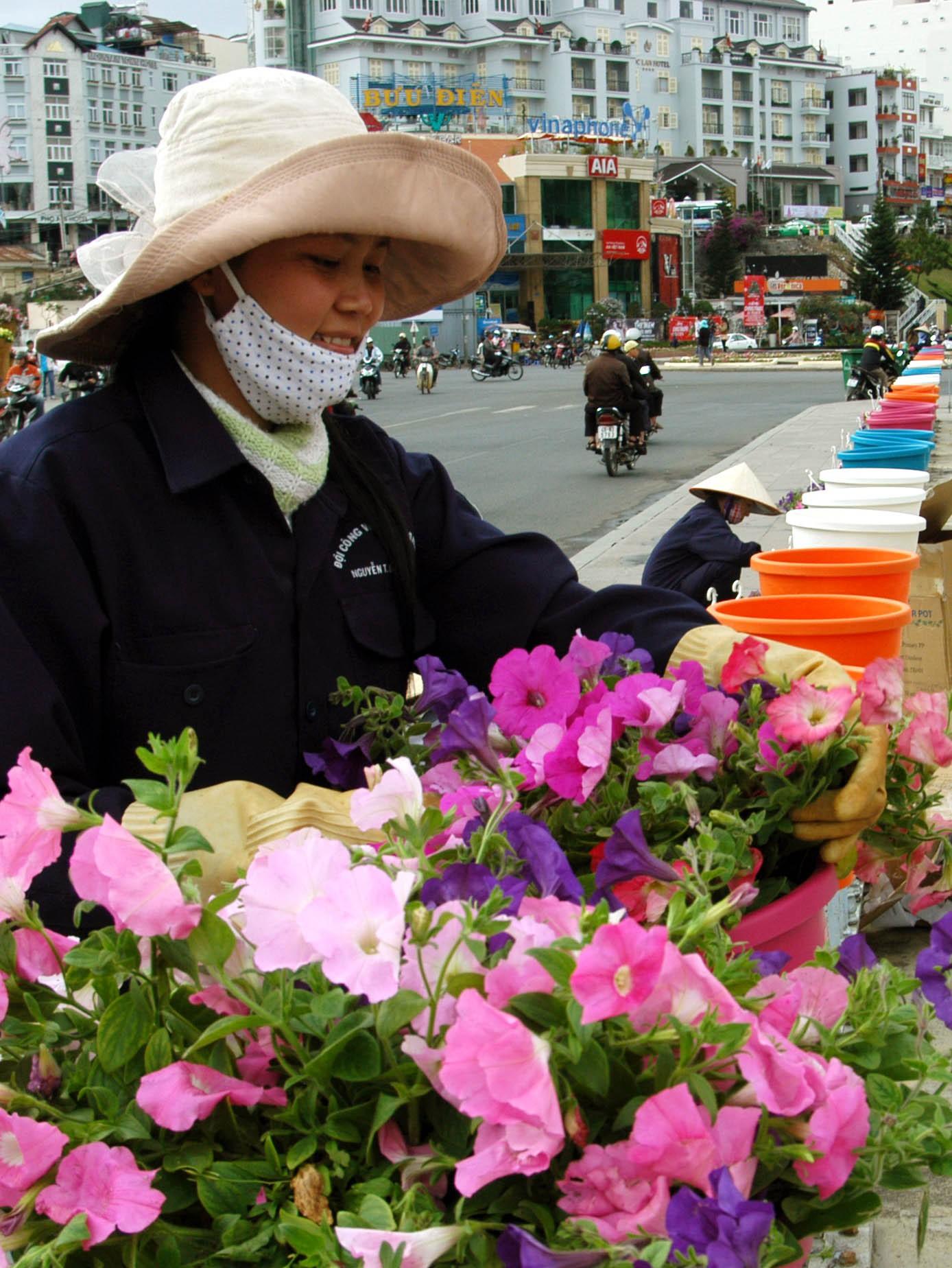công dân thành phố hoa