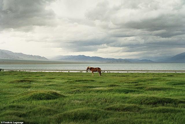 Những bức ảnh mê hoặc về Mông Cổ - Ảnh 18.