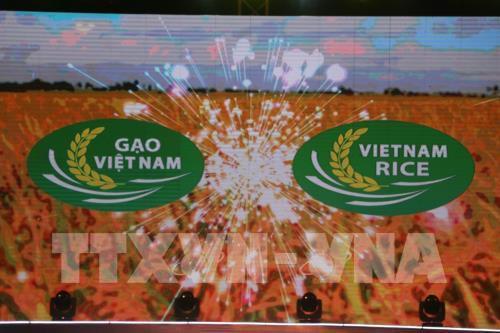 Thương hiệu gạo Việt: Muộn còn hơn không! - Ảnh 1.