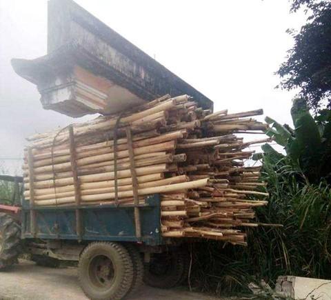 Xe chở gỗ, khiêng luôn cổng chào của làng là có thật - Ảnh 2.