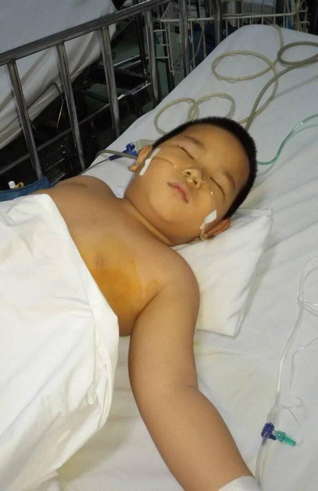 Thương cháu bé 3 lần cắt nội tạng vẫn chưa thoát khỏi tử thần - Ảnh 8.