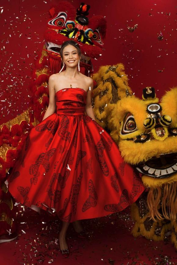 Dàn Hoa Hậu, Á hậu Hoàn vũ Việt Nam rực rỡ trong bộ ảnh đón Tết - Ảnh 3.
