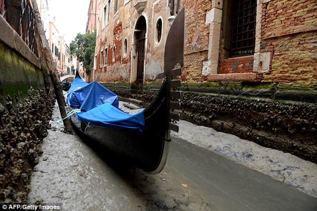 Venice cạn nước vì siêu trăng - ảnh 1