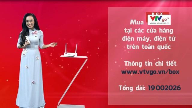 Chính thức ngừng phát sóng vệ tinh nước ngoài kênh VTV4 - Ảnh 1.